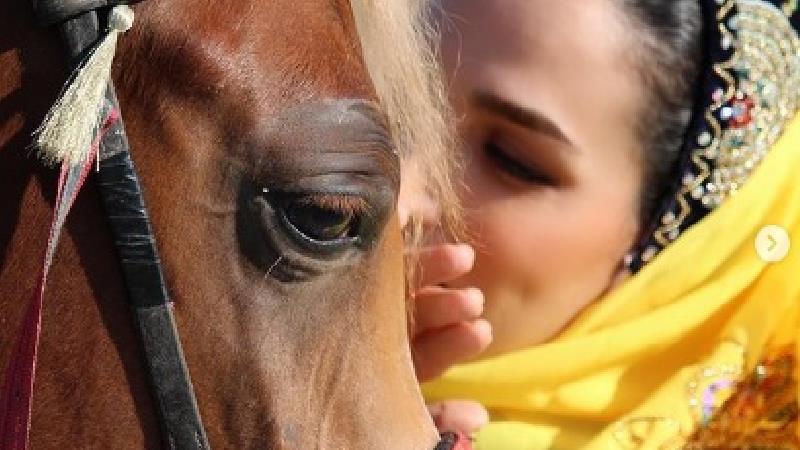 اسب سواری لاکچری سوگل طهماسبی