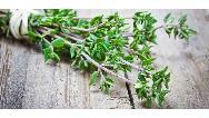 خواص حیرت آور گیاه آویشن در سلامت بدن