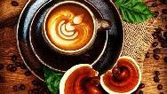 همه چیز درباره قهوه گانودرما؛ از درمان سرطان تا کمک به لاغری