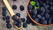 همه خواص توت سیاه از کنترل دیابت تا لاغری